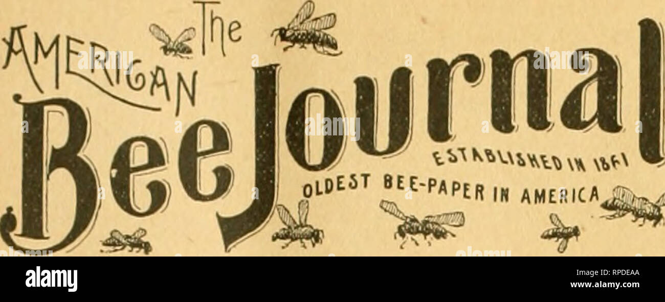 """. American bee journal. Bee culture; Bees. 848 THE AMERICAN BEE JOURNAL. May 30,. PUBLISHED WEEKLY liV GEORGE W. YORK & COMPANY, 56 Fittb Avenue. - CHICAGO, IKT.. ?1.00 a Year—Sample Copy Sent Free. [Entered at the Post-Offlce at ChicaBO as Second-Class Mail-Matter.J VoinXV. CHICAGO, ILL, MAT 30, 1895. No, 22. Editorial Budget. Meiuorial Day has come once more, and again with beautiful flowers will be decorated the graves of our Nation's heroic dead. In commemoration of the solemn event, a song —""""When Should the Nation Forget ?""""—is published in the Bee Journal this week, which do - Stock Image"""