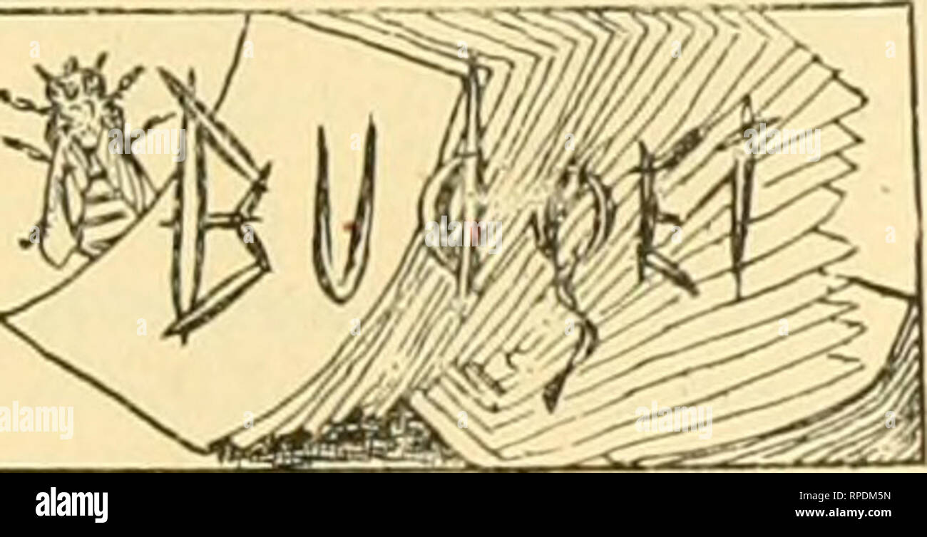 """. American bee journal. Bee culture; Bees. 1898. THE AMERICAN BEE JOURNAL. 105 are 200 subscribers, and it would require 1,000 to pay ex- penses out of pocket. But we needn't go to England for tiiat sort of honesty. It can be found In the columns of the Progressive Bee-Keeper, which has entered Its eighth year, and whose publisher says : """"Friends, do you know the Progressive has never made a dol- ar for me yet? It is a fact. It has never paid more than expenses."""" And yet the Progressive is worth a dozen of those papers that flourlsht such long lists of subscribers, and then mysteriou Stock Photo"""