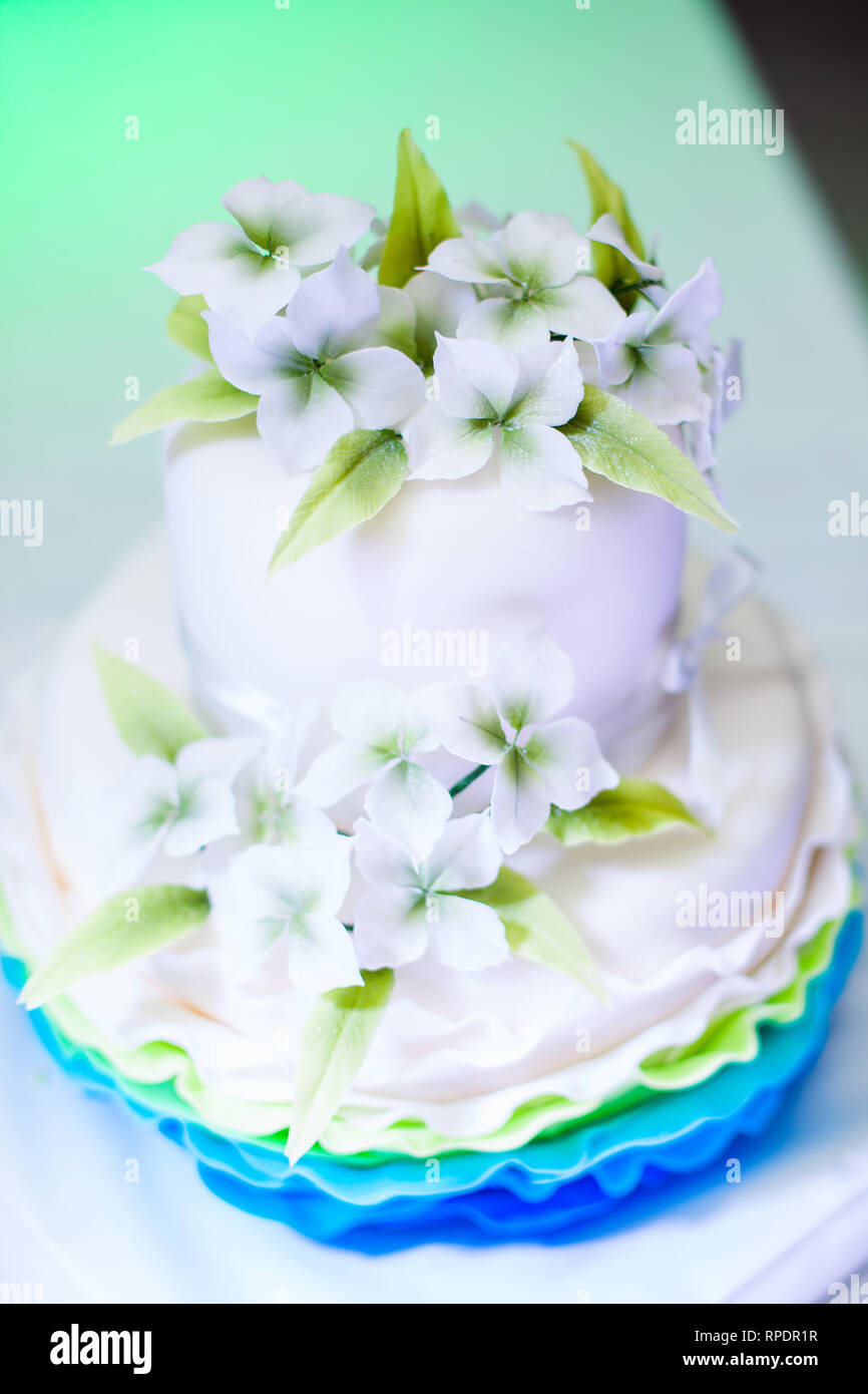 Brilliant White And Blue Birthday Cake With Nice Flowers For Girl And Funny Birthday Cards Online Hetedamsfinfo