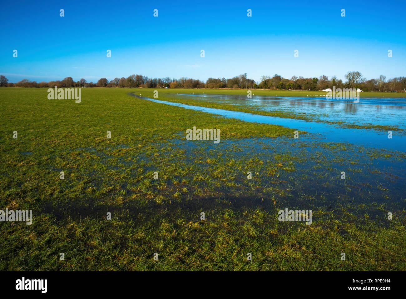 Abbots, Cambridgeshire, Cambs, England - Stock Image