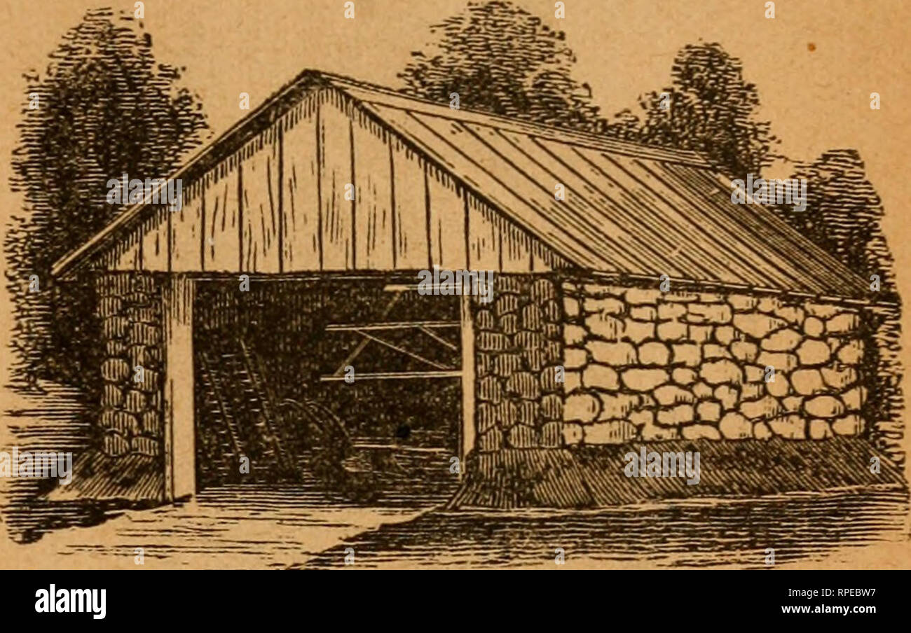 The American farm and stock manual  Agriculture