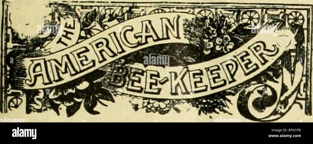 The American bee keeper  Bee culture