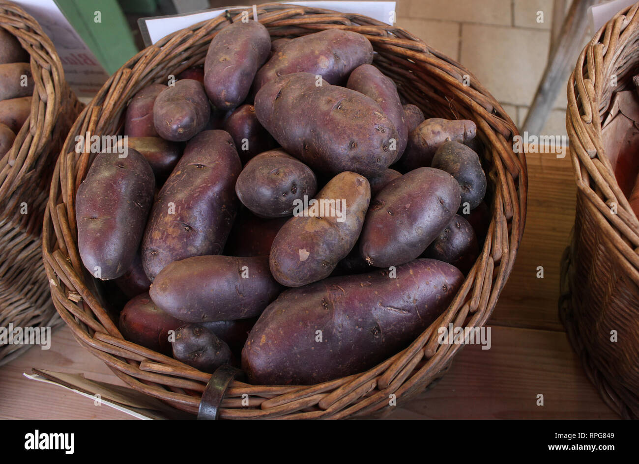 Vitelotte  potato, french blue colored potato species. Presented on a food market for fine food. - Stock Image