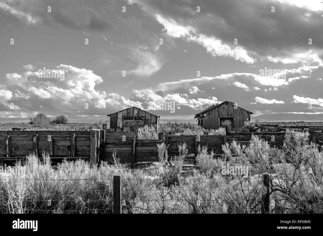 Old bunkhouses and corrals at a cow camp in the Central Valley of Caifornia USA - Stock Image