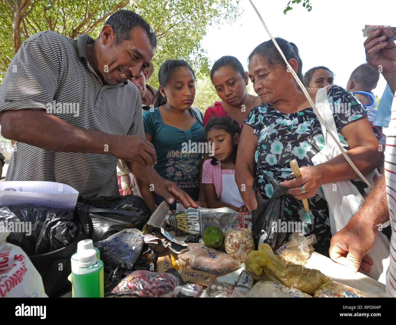 El Salvador  Seed exchange. An event organized by JDS so that local farmers can exchange seeds and other produce such as rabbits, honey, fish and other food products, - Stock Image