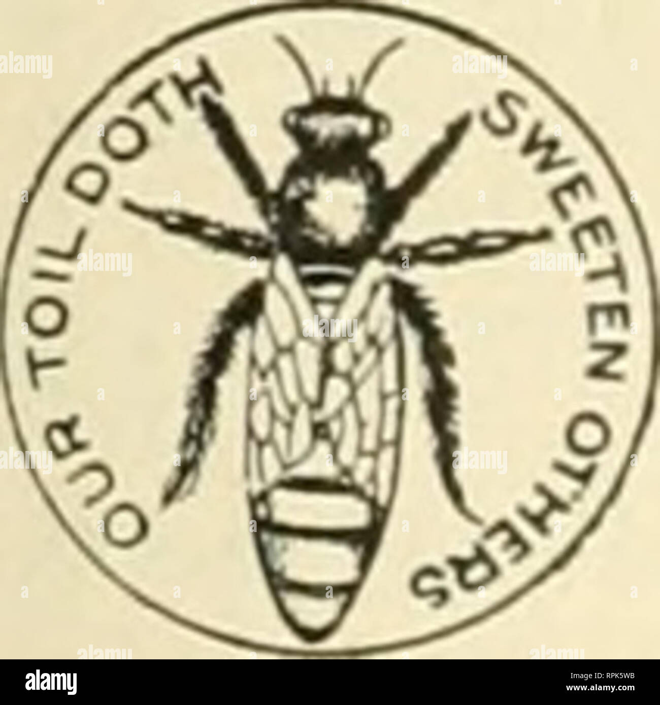 . American bee journal. Bee culture; Bees. 280 AMERICAN BEE JOURNAL, May 2, 1901. are a few varieties of fruit deficient in pollen, is well known to all intellig-ent fruit growers, and they know equally as well that it is not necessary to have bees to accomplish this cross-polleuization, and do not depend upon them, but successfully manage it in another way. It is found that all that is necessary is, to plant these trees defi- cient in pollen, near some variety that produces pollen abundantly. In large orchards it is accomplisht by plant- ing the different varieties in alternate strips of seve - Stock Image