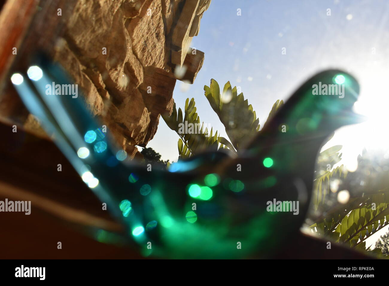 An immobile glass bird looks out a window into the sun and empty blue sky - Stock Image