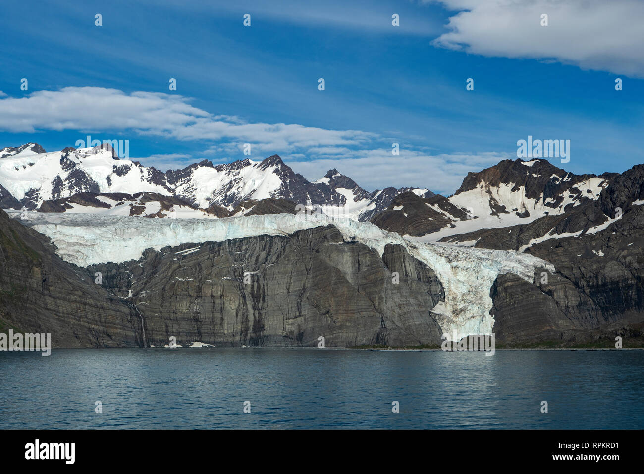 Bertrab Glacier, Gold Harbour, South Georgia Stock Photo