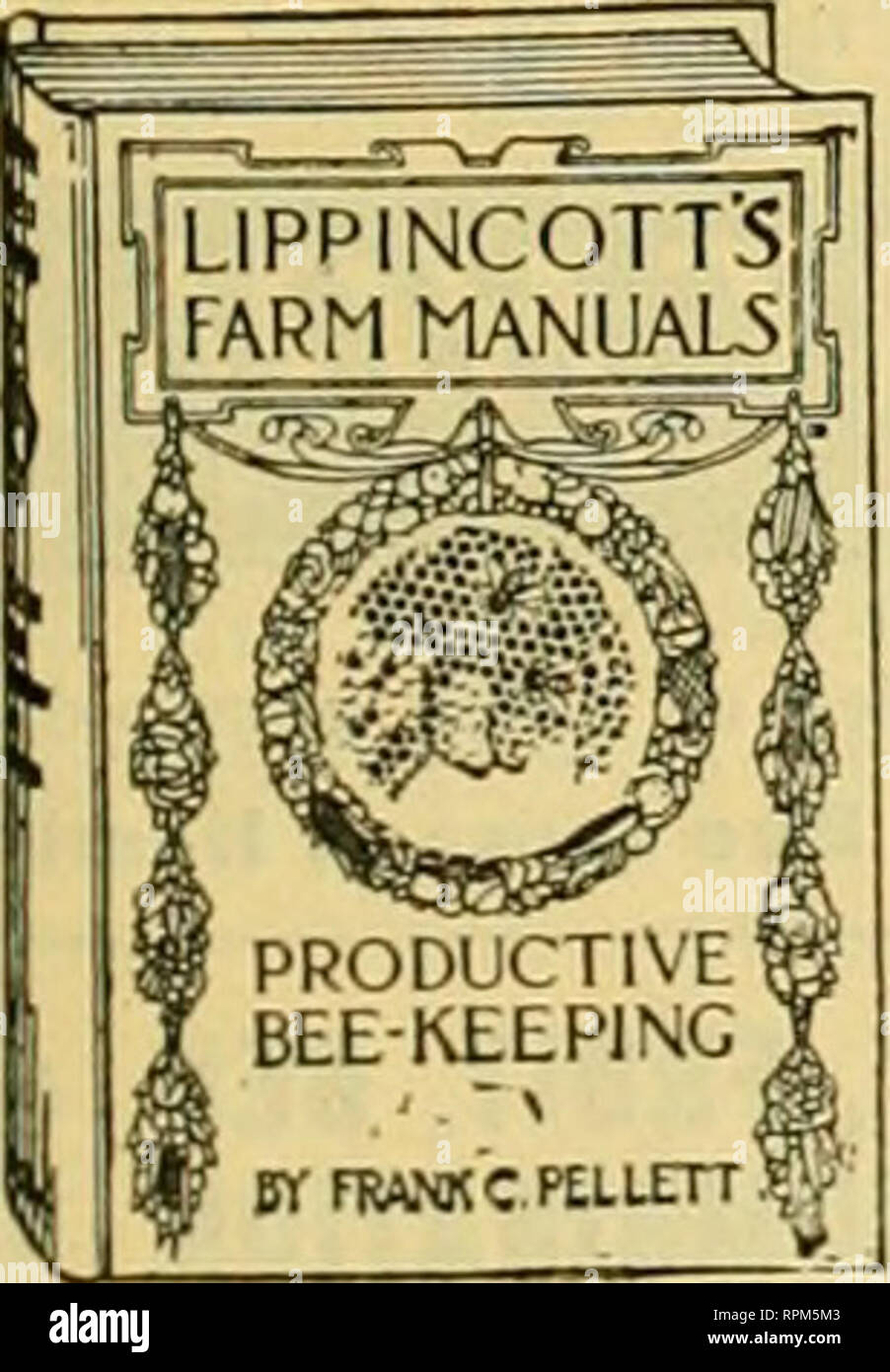 . American bee journal. Bee culture; Bees. PATENTED WRIGHT'S FRAME-WIRING DEVICE of Most rapid in use. Save in one day. Tighter wires, no kinks, no sc hands. Price, $2.5C, postpaid in U. S. A. G. W. Wright Company, Azusa, Calif THE FAMOUS DAVIS GOLDENS And get big yields from gentle bees. Write for Circular and Price List. BEN G. DAVIS, Spring Hill, Tennessee. Productive Beekeeping By FRANK C. PELLETT. Frontispiece in color ; 134 illustrations ; 316 pages ; handsome and durable cloth binding. A Practical Book for The Practical Bee Man Price, Postpaid, $1.75 AMERICAN BEE JOURNAL Hamilton, Illin - Stock Image
