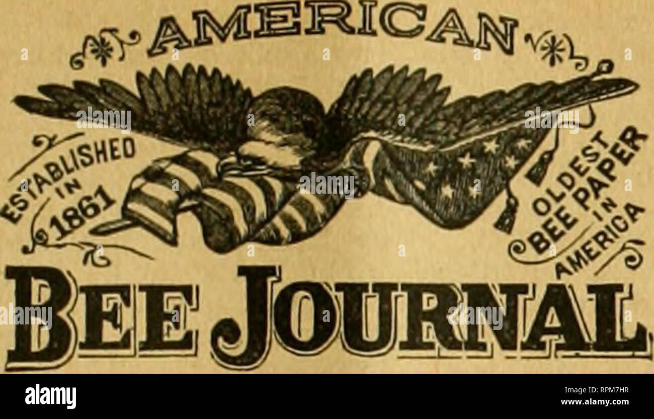 American bee journal  Bee culture