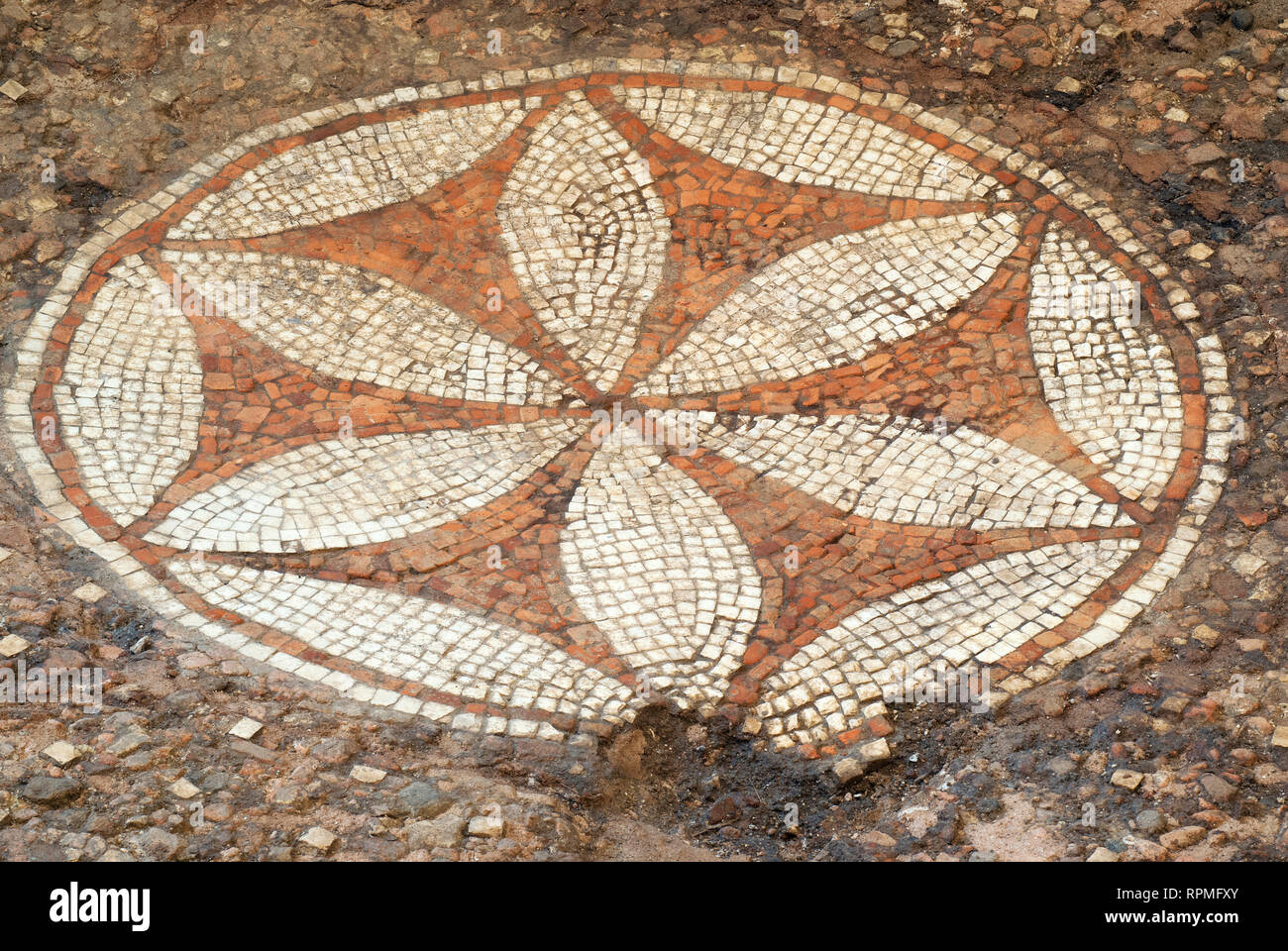 "Ancient Roman pavement mosaic at Archaeological Museum Fregellae ""AMEDEO MAIURI"", Ceprano, Lazio, Italy Stock Photo"