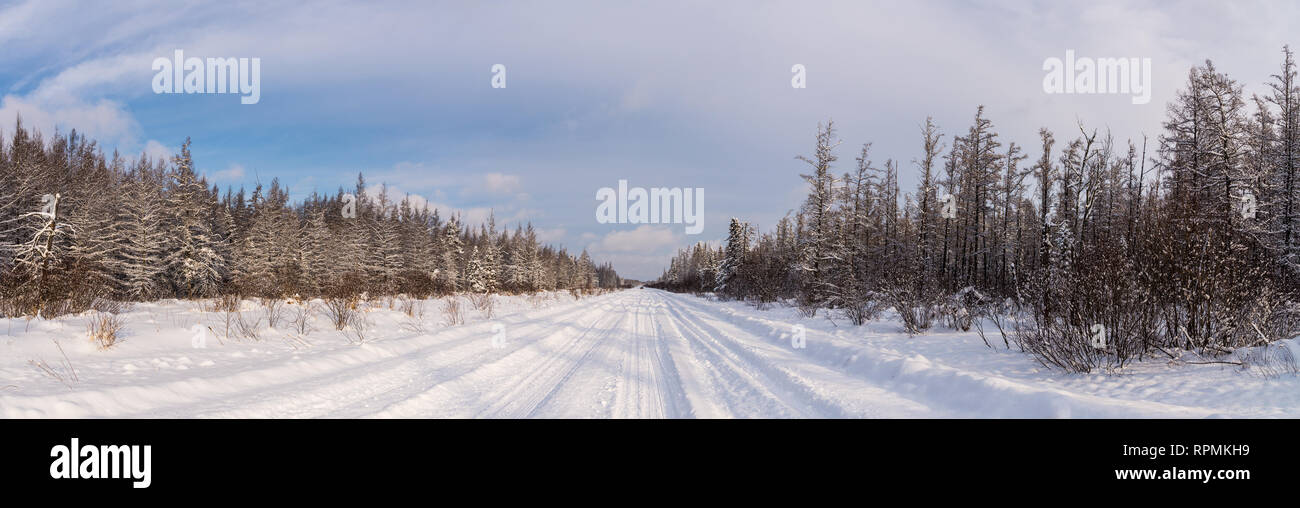 Panoramic view of snow-covered road at the Sax-Zim Bog. Duluth, Minnesota, USA. - Stock Image