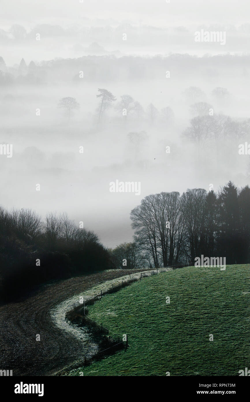 Morning mist and frost in the Meon Valley in the South Downs National Park, near Bishops Waltham, UK, Tuesday, February 19.   Photograph : © Luke MacG - Stock Image
