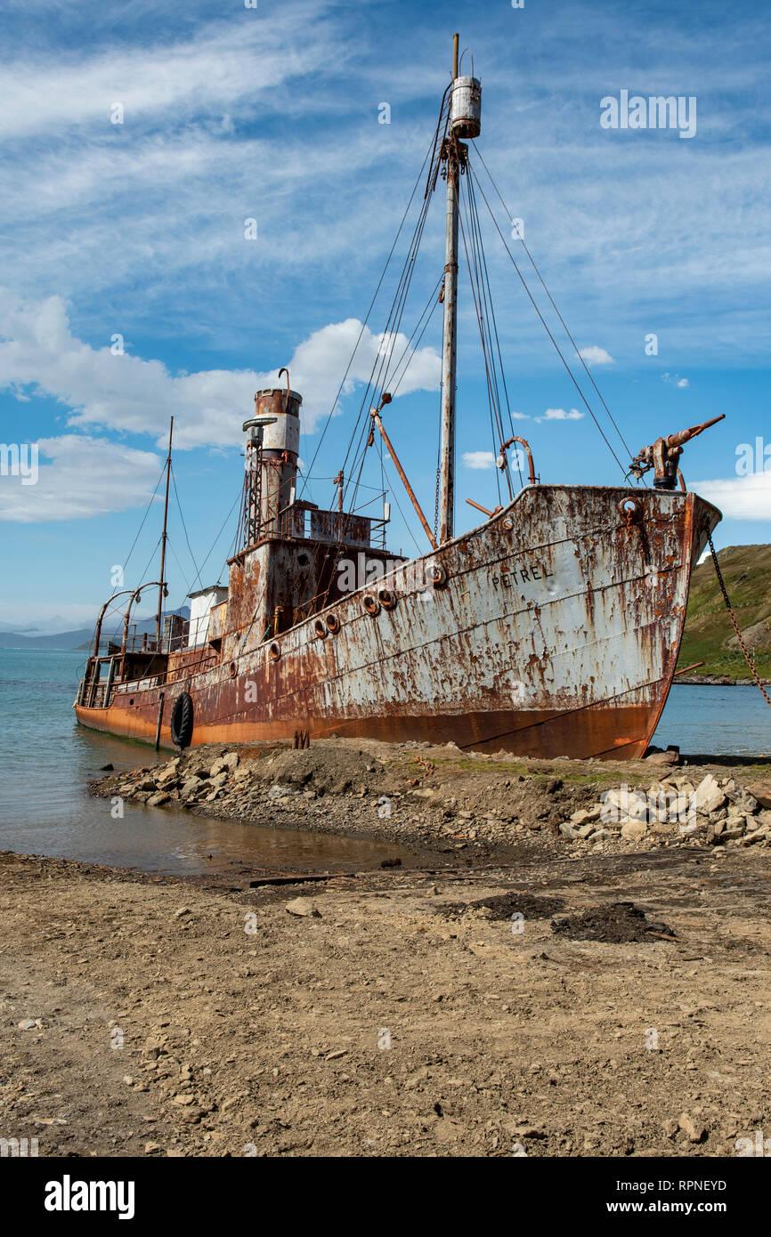 Wreck of the Petrel at Grytviken, South Georgia - Stock Image