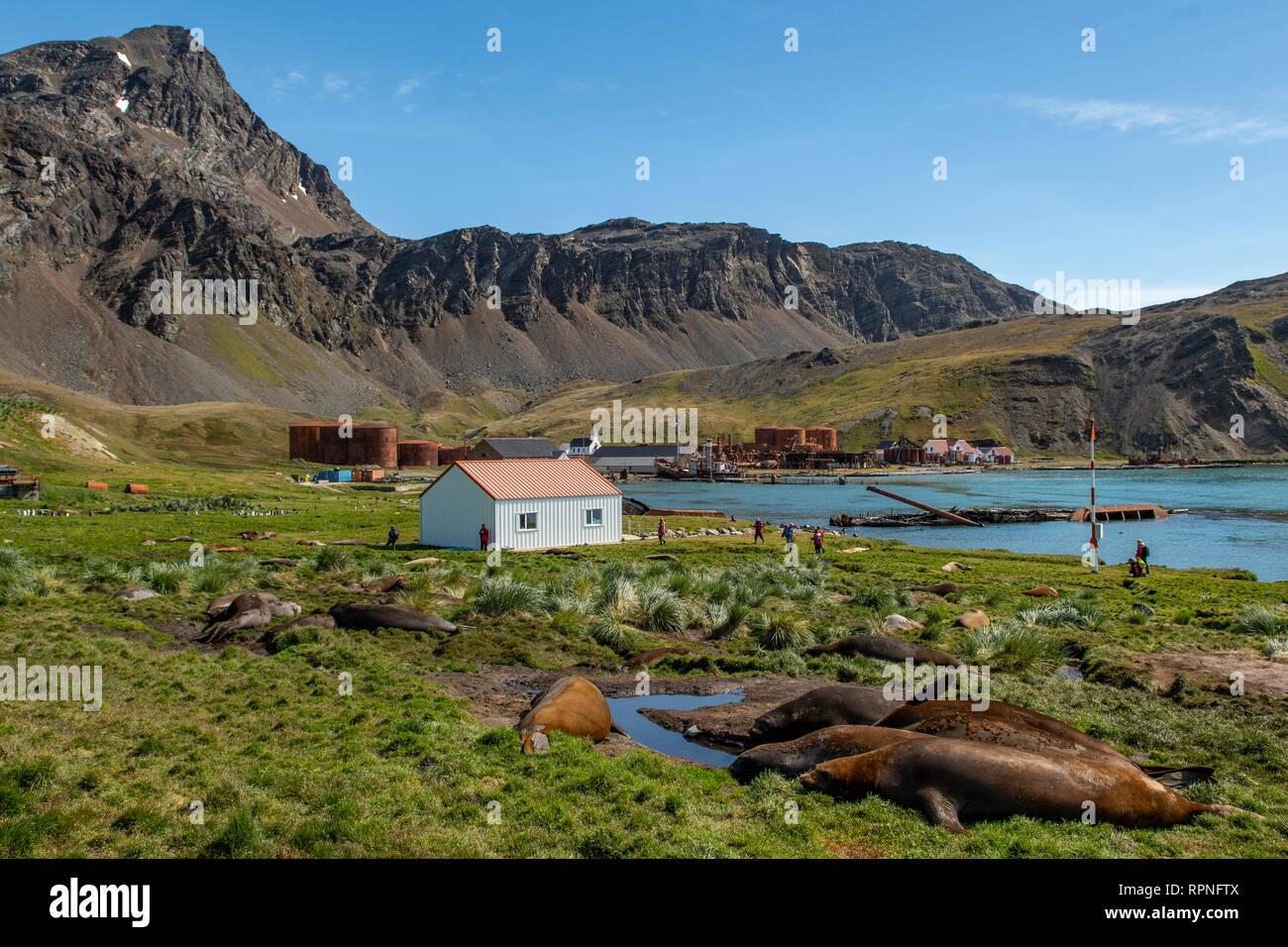 Whaling Station, Grytviken, South Georgia - Stock Image