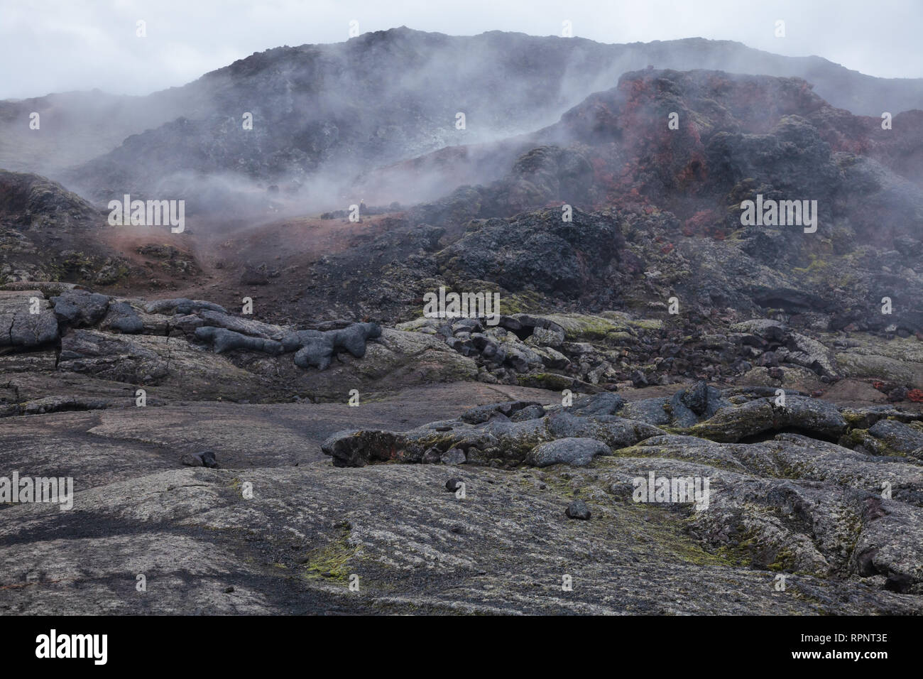 Hot steaming lava field at Krafla volcanic area in Mývatn region, Northeastern Iceland, Scandinavia - Stock Image