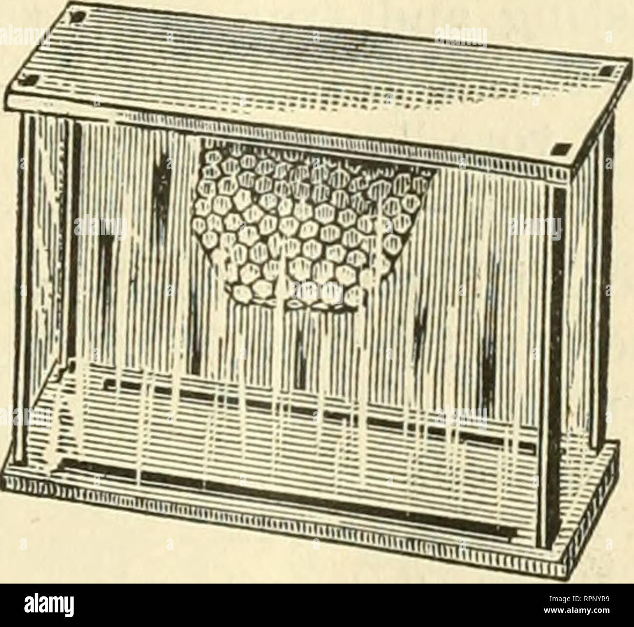 . American bee journal. Bee culture; Bees. AMEKICAN HIVE. American, and Langstroth hives; all metal extractor; bee feeder; the new smoker. J. H. Nellis—A sample showing a new way of fastening foundation in frames, viz., by timiing up the edgei inch, thus: ], and then tacking on a small strip of pine, driving the brads through the strip and upi)er edge of the foundation into the top bar.. ISHAM HONEY BOX, C. F. Muth—All-metal honey ex- tractor, honey jars, Langstroth hives and veils. ' W. A. Schofield—a new, broad-bladed honey knife, with curved handle and point.. Please note that these images  - Stock Image