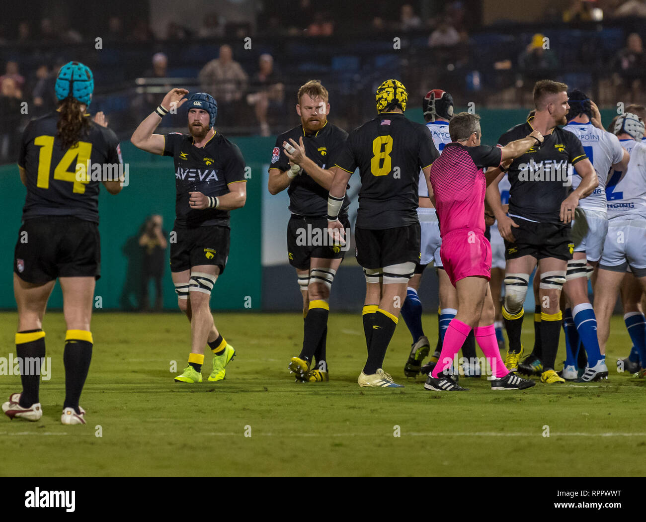 February 22, 2019 Houston SaberCats celebrate after a try