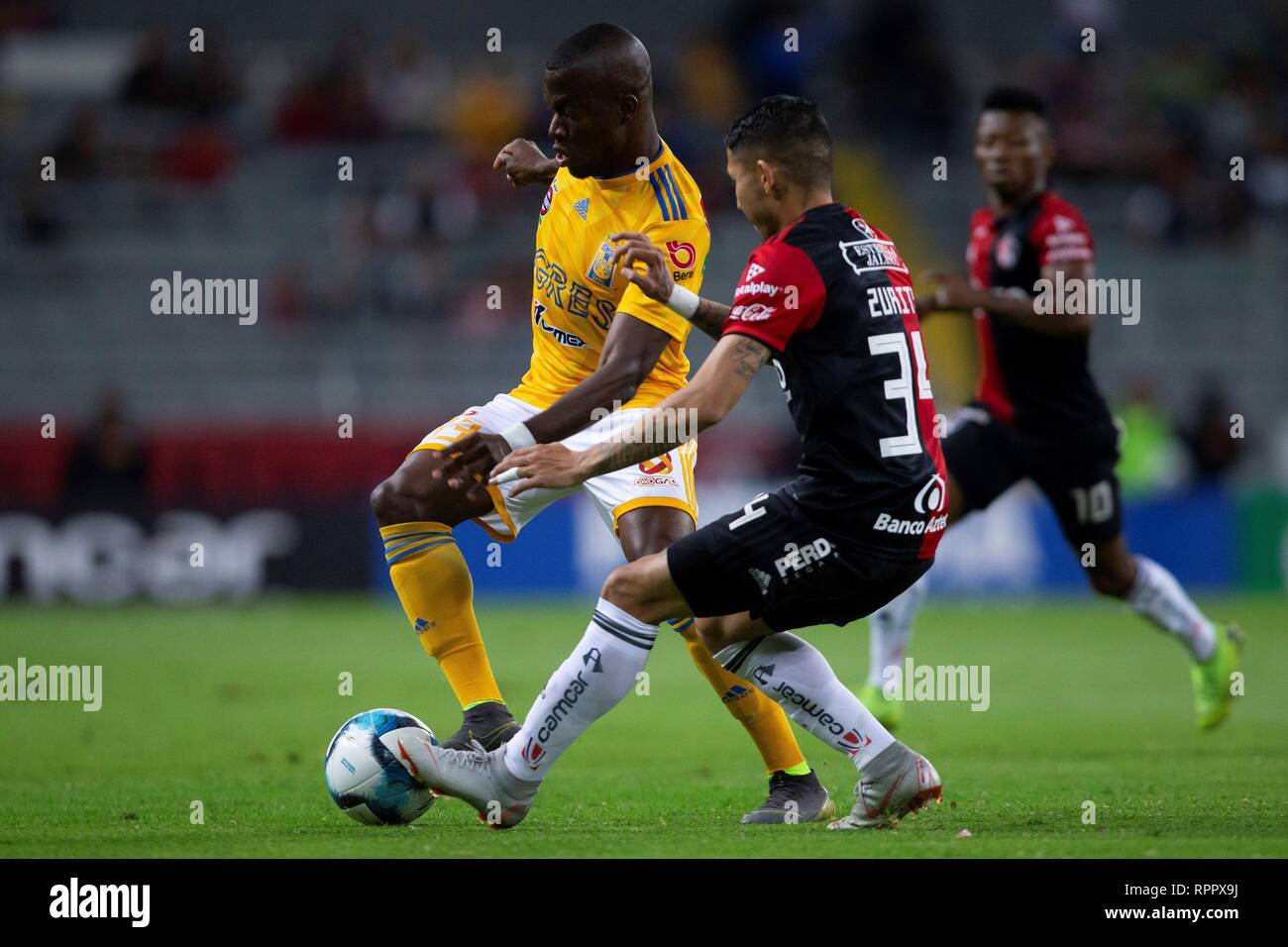 Atlas' Irving Zurita (R) vies for the ball against Tigres' Enner Valencia (L) during a match of the Mexican tournament between Atlas and Tigres, held at the Jalisco, Guadalajara, México, on 22 February 2019. EFE/ Francisco Guasco - Stock Image