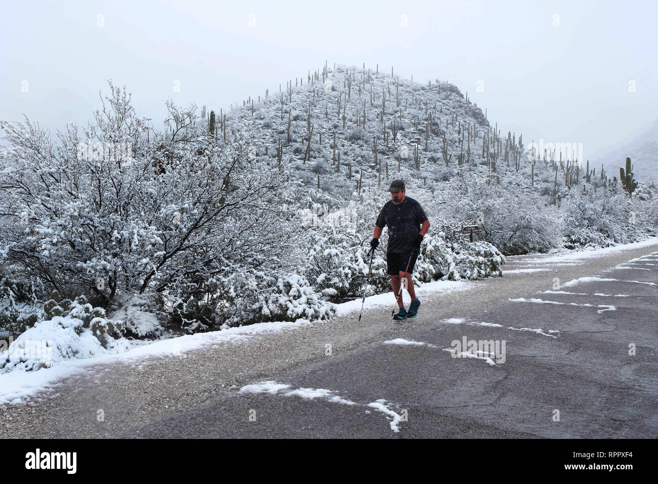 Tucson, Arizona, USA. 22nd Feb, 2019. February 22, 2019- Snowstorm at Sabino Canyon in Tucson, Arizona. A rare winter blizzard brought snow to southern Arizona. Many Tucson residents and touridts went to the National Park at Sabino Canyon to enjoy the unusual weather . Tempertures were 30 degrees colder than normal for this time of year. Credit: Christopher Brown/ZUMA Wire/Alamy Live News Stock Photo