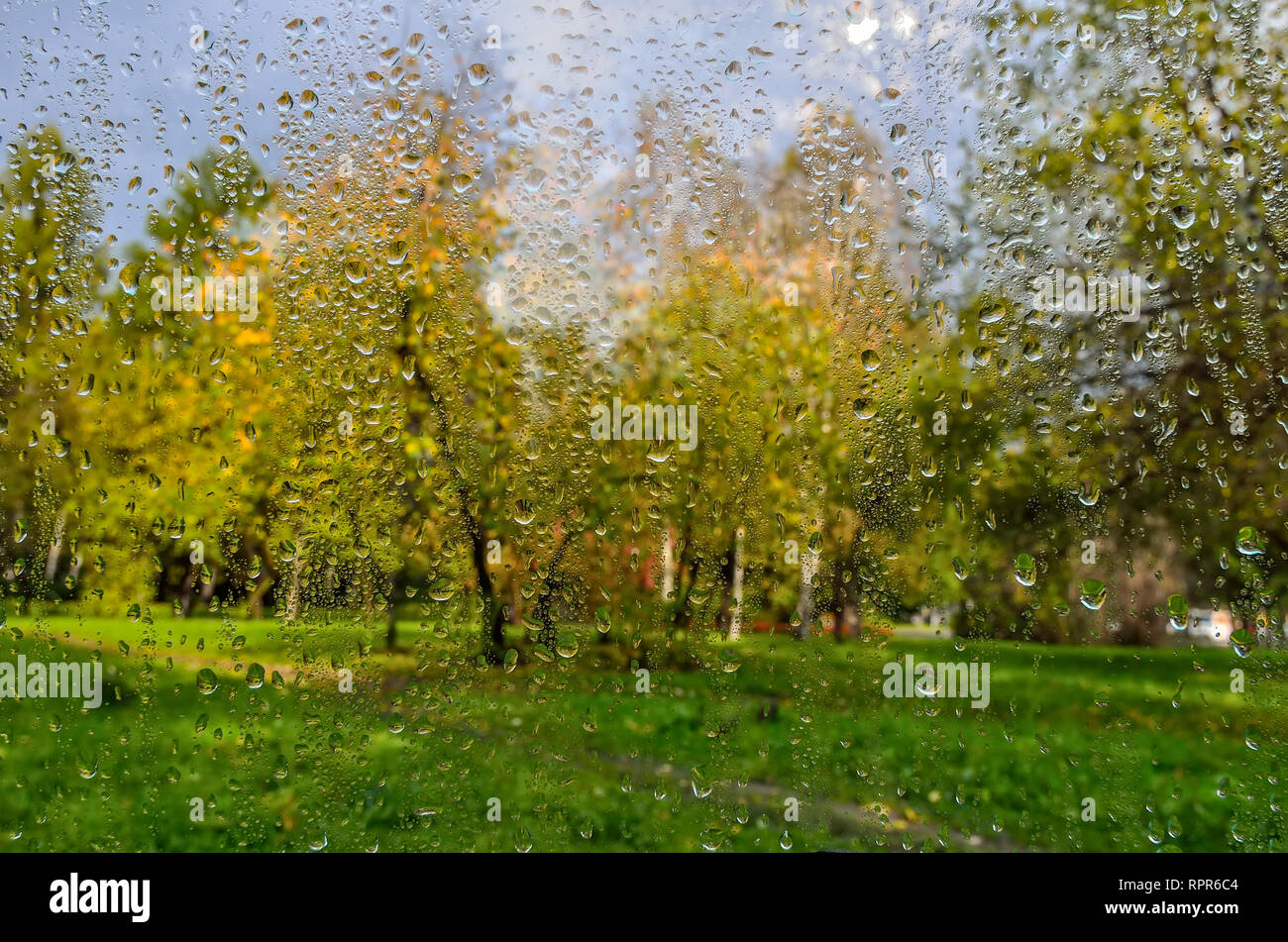 Bright, colorful autumn blurred landscape in city park with wet foliage after rain through  wet window glass with raindrops. Rainy autumn weather and  - Stock Image