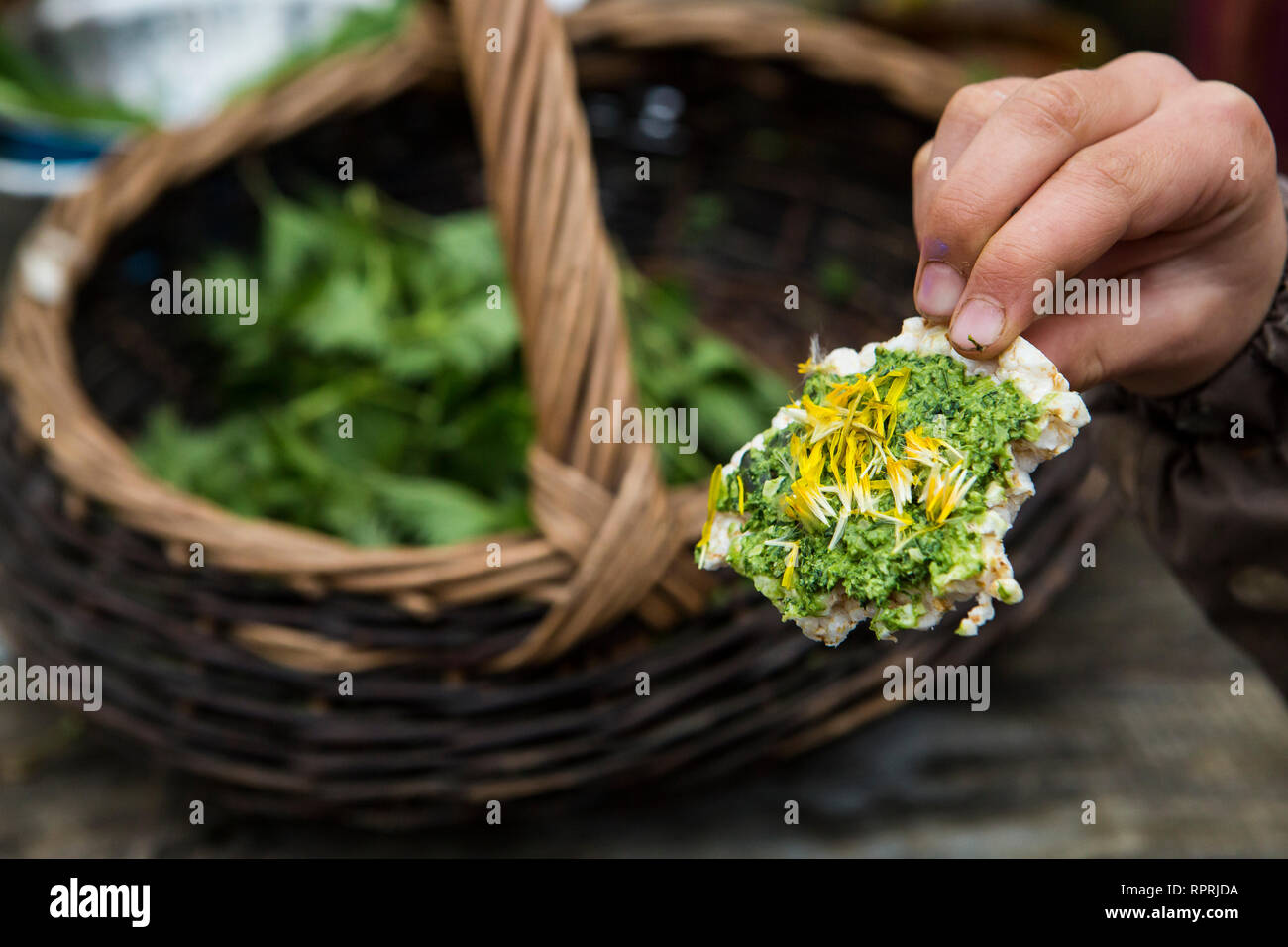 Nettle and Wild Garlic Pesto canape, wild food foraged in Sussex, UK Stock Photo