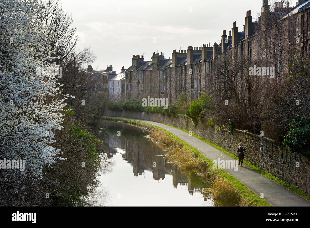 The Union canal at Viewforth, Edinburgh. - Stock Image