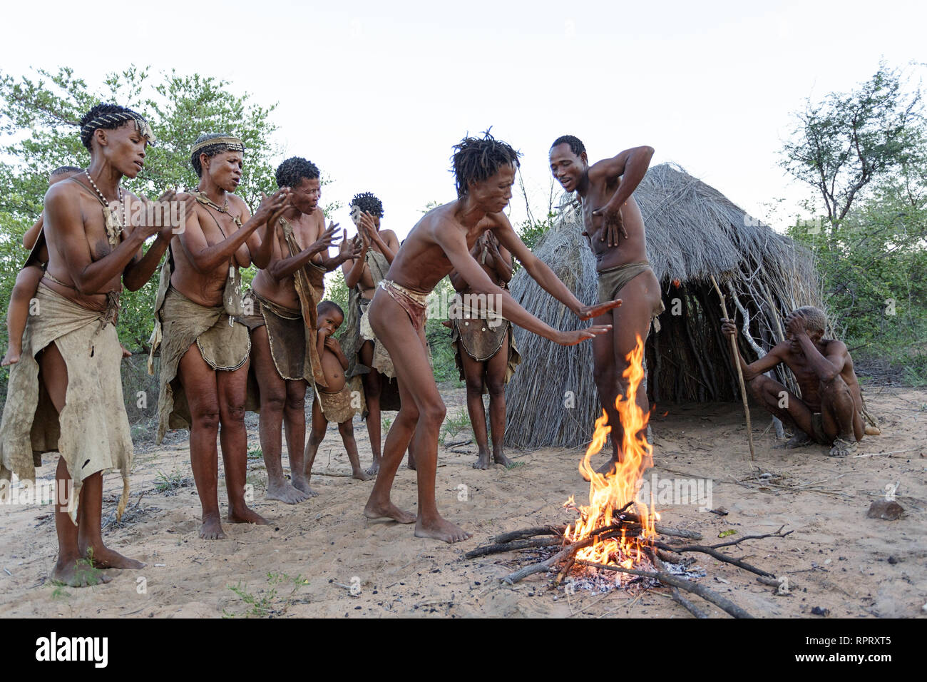 Bushmen of the San people singing and dancing traditional dances around the fire in front of the hut, Kalahari, Namibia, Africa Stock Photo