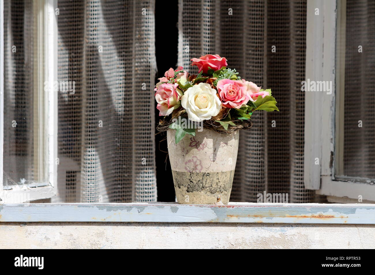 Ceramic partially broken flower vase with plastic roses in various colors on top of window seal with open windows and curtain in background - Stock Image