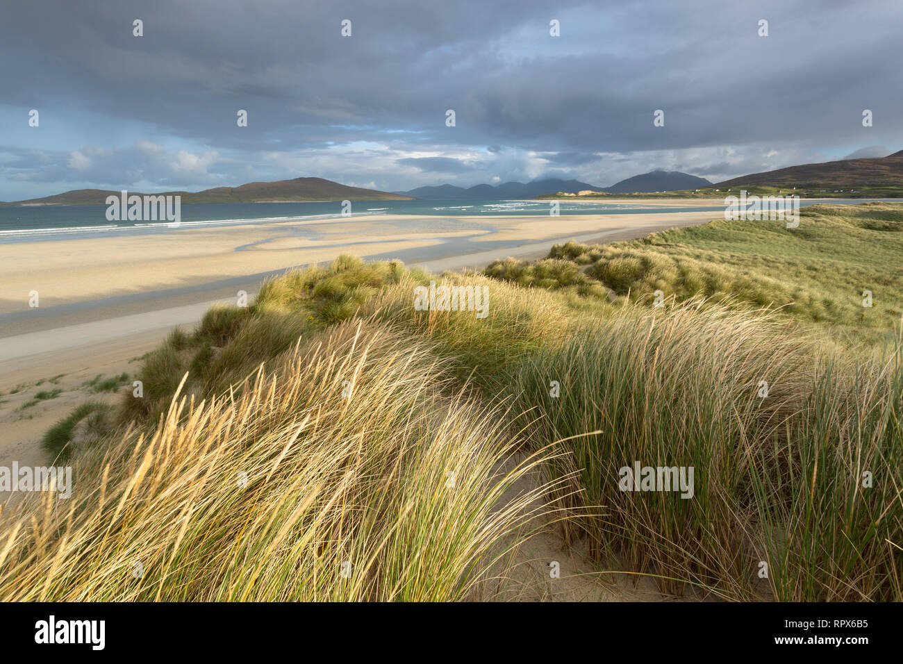 A windy morning on the dunes at Seilebost, Isle of Harris, Outer Hebrides, Scotland - Stock Image