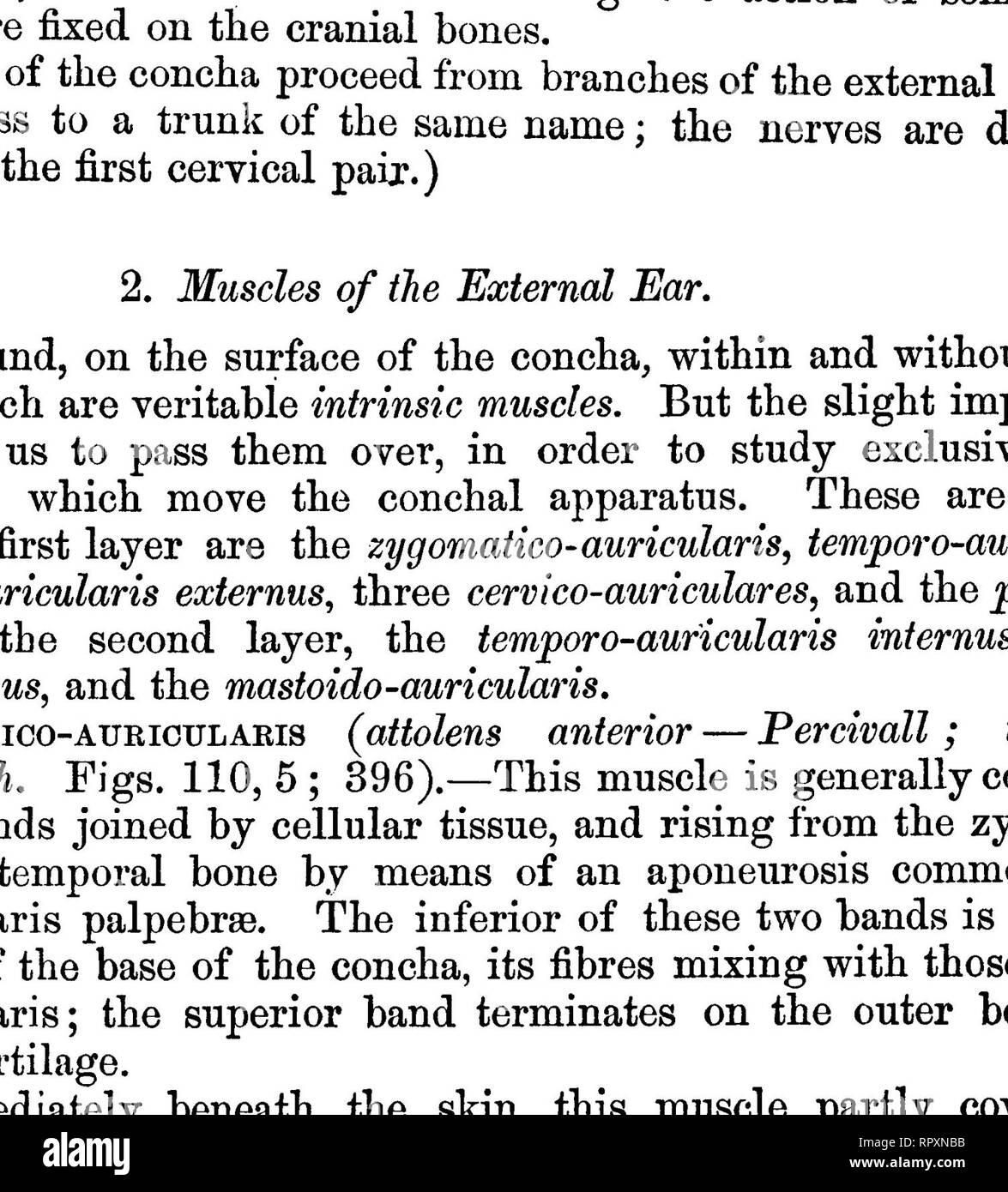 . The comparative anatomy of the domesticated animals. Veterinary anatomy. 848 THE APPARATUS OF THE SENSES, not join on the median line, but are placed at the sides of the head, below the horns.) 3. ScuTO-AURicuLARis ExTERNUS (anterior concJice—Percivall. Fig. 396). —This muscle may be said to be a dependency of the preceding, whose action it transmits to the conchal cartilage, and renders it more complete. Extending from the external face of the scutiform cartilage to the inner side of the concha, and generally composed of two fasciculi, it is covered by the skin and the conchal band of the e - Stock Image