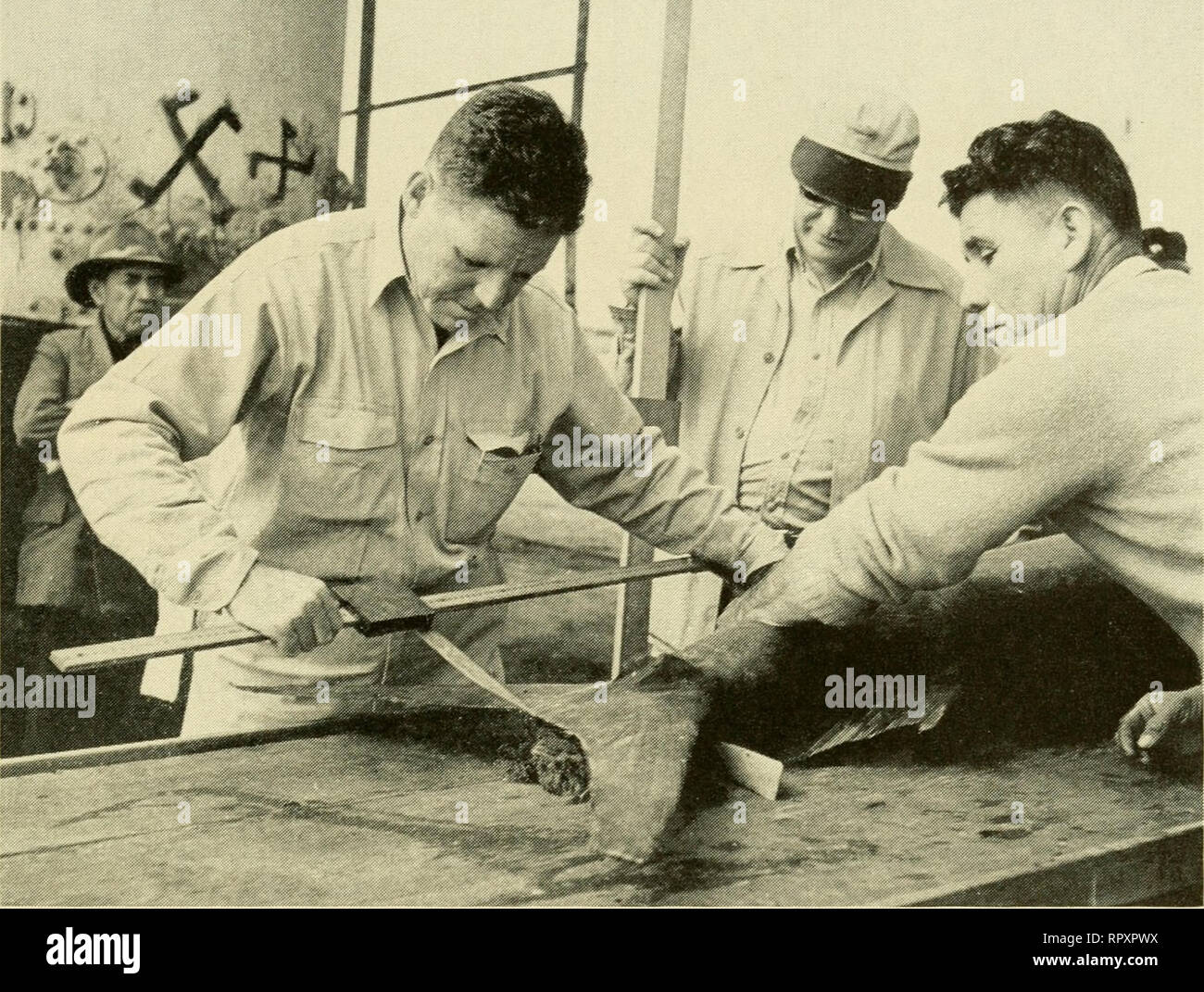 . Albacora; the search for the giant broadbill. Swordfish; Marlin fishing. Luis I{ia^ I k'fu with J(^hn Manning (in cap) taking precise measurements of a marlin Plankton tow, magnified, showing comparative size as against a ten-cent piece *^« :>2 ?^. M:4.t ^, -^-:,'-n.:. Please note that these images are extracted from scanned page images that may have been digitally enhanced for readability - coloration and appearance of these illustrations may not perfectly resemble the original work.. Marron, Eugene Marie 1904-. New York, Random House Stock Photo