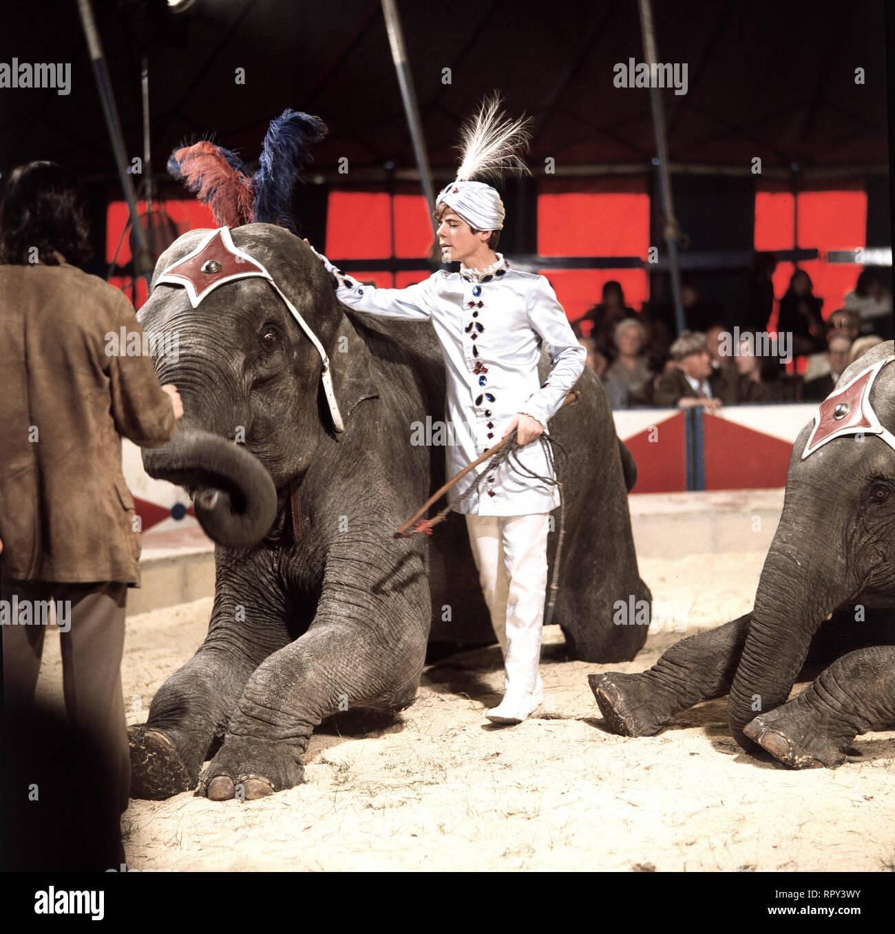 HEINTJE / HEINTJE (HEIN SIMONS), eigentl. Hendrik Simons, Auftritt als Elefanten-Dompteur in der BR-Sendung: Stars in der Manege - aus dem Circus-Krone-Bau in München, 18. Januar 1969. / Überschrift: STARS IN DER MANEGE - Stock Image