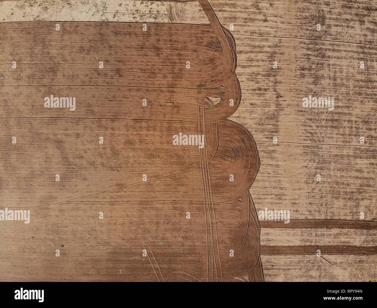 Aerial view of crop field, field of land in the vicinity of Santa Ana, Sonora, Mexico. shapes, figures, lines, Agriculture, Agronomy, Landscape, dayli - Stock Image