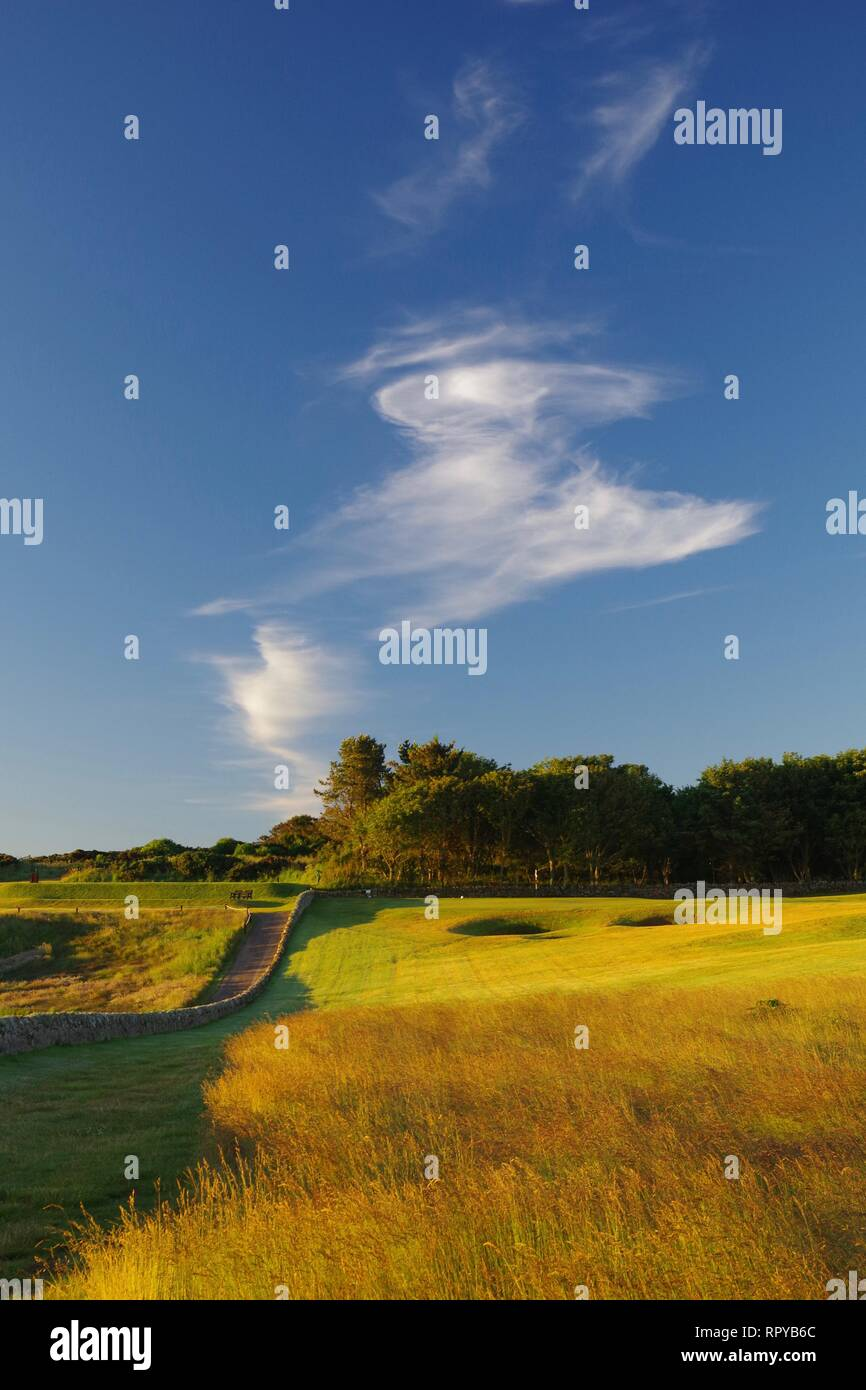 The Rough at Crail Golfing Society Golf Course on a Sunny Summers Morning, Cirrus Cloud Formation. Fife Ness, Fife, Scotland, UK. - Stock Image