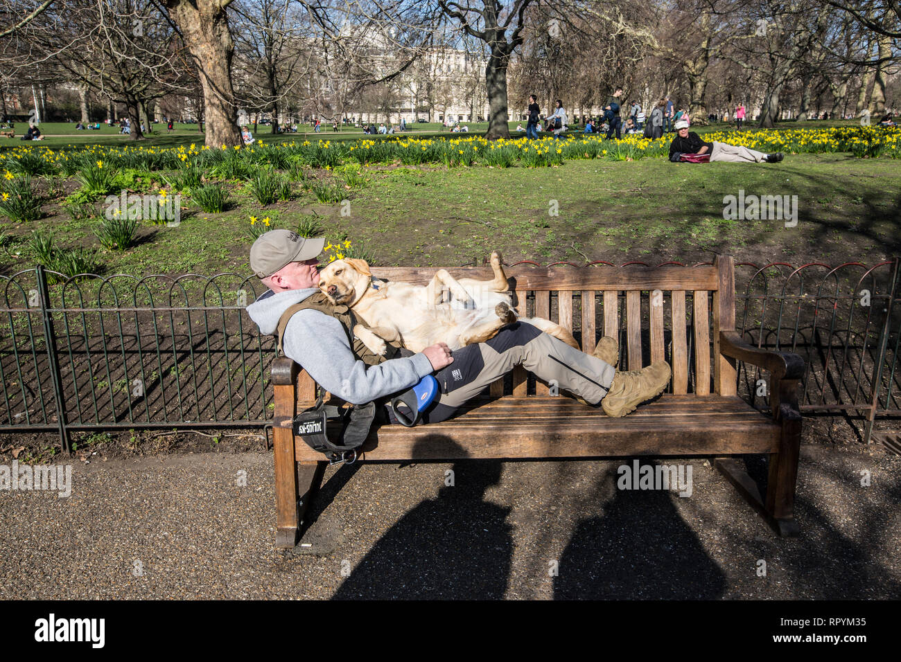 St James' Park, Central London, UK. 23rd February, 2019. A man and his canine friend enjoy the warm temperatures as Spring arrives in St James park, London, England UK 23rd February, 2019 Credit: Jeff Gilbert/Alamy Live News - Stock Image