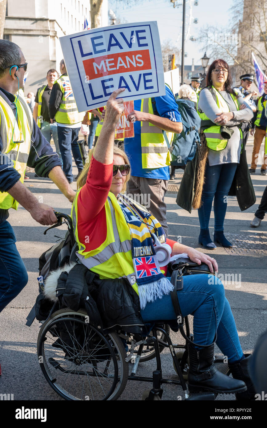 London, UK. February 23rd 2019. Pro Brexit ÔYellow VestsÕ marched escorted by police from Trafalgar Square down Whitehall and Parliament Street to Parliament Square. Traffic was held longest outside Downing Street and at the Parliament Square junction. Angry drivers sounded their horns. The ÔYellow VestsÕ then marched back again. They carried placards stating Leave Means Leave, supporting leaving the EU without a deal. Credit: Stephen Bell/Alamy Live News. Stock Photo