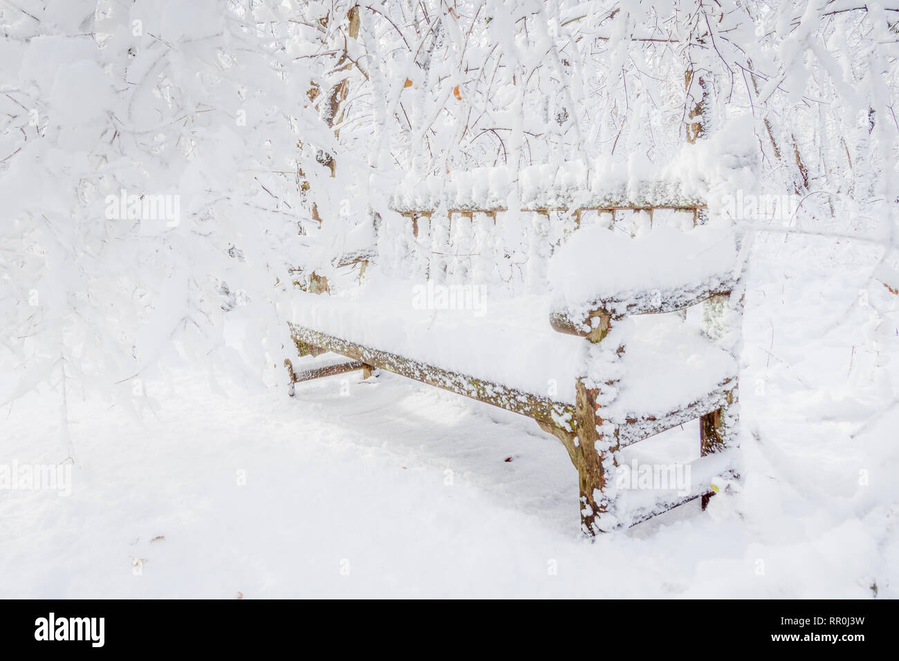 Bench covered in snow - Stock Image