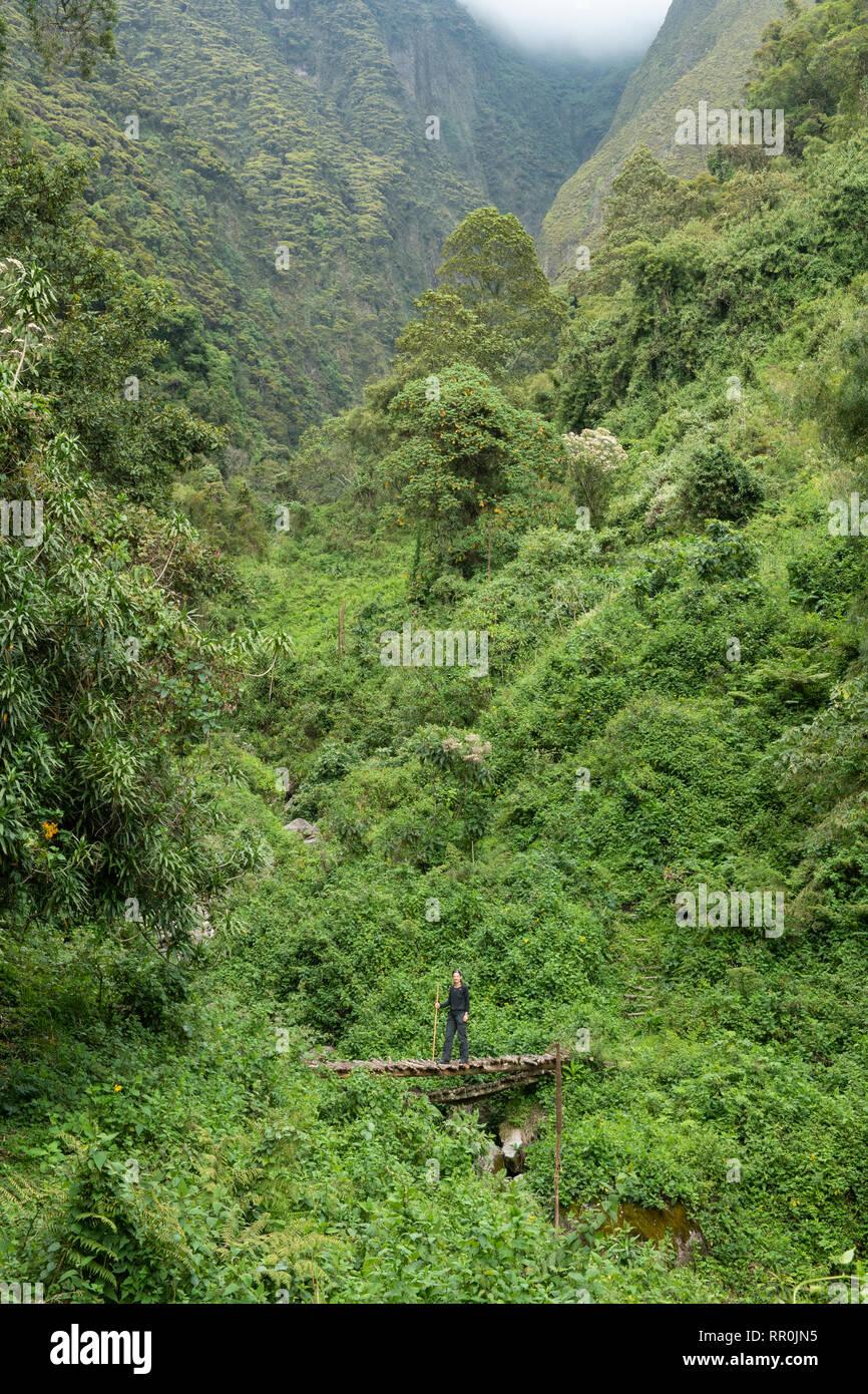 Sabyinyo gorge on Sabyinyo volcano in the Virunga Mountains, Mgahinga Gorilla National Park, Uganda - Stock Image