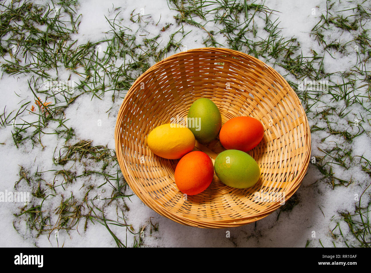 Five colorful easter eggs in a straw basket on top of snow and grass isolated egg hunt Stock Photo