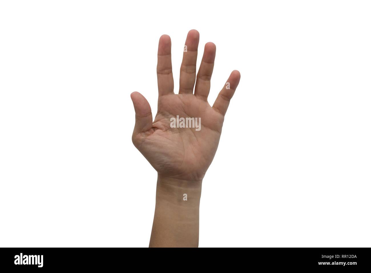 One hand raised high up isolated on white background. Stock Photo