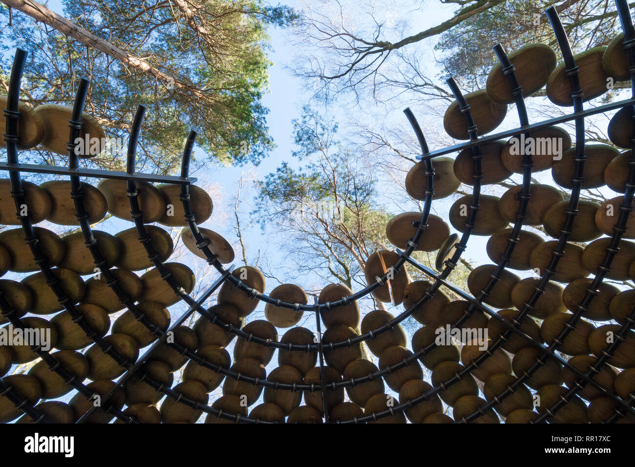 Art installation called Perspectives by Giles Miller in The Hurtwood in the Surrey Hills Area of Outstanding Natural Beauty, UK. Seated pavilion. - Stock Image