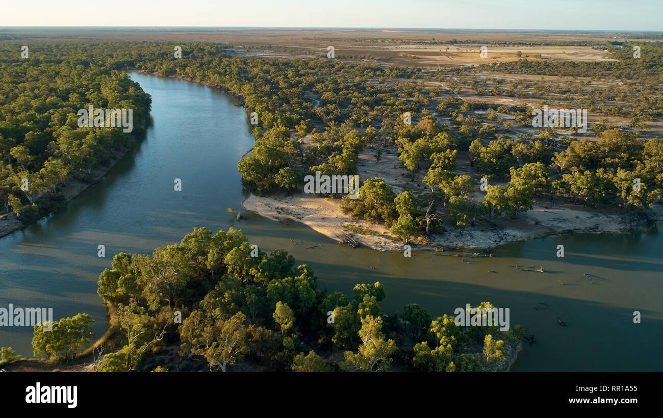 Murray River cutting a new course and creating a new island downstream of Wentworth. - Stock Image