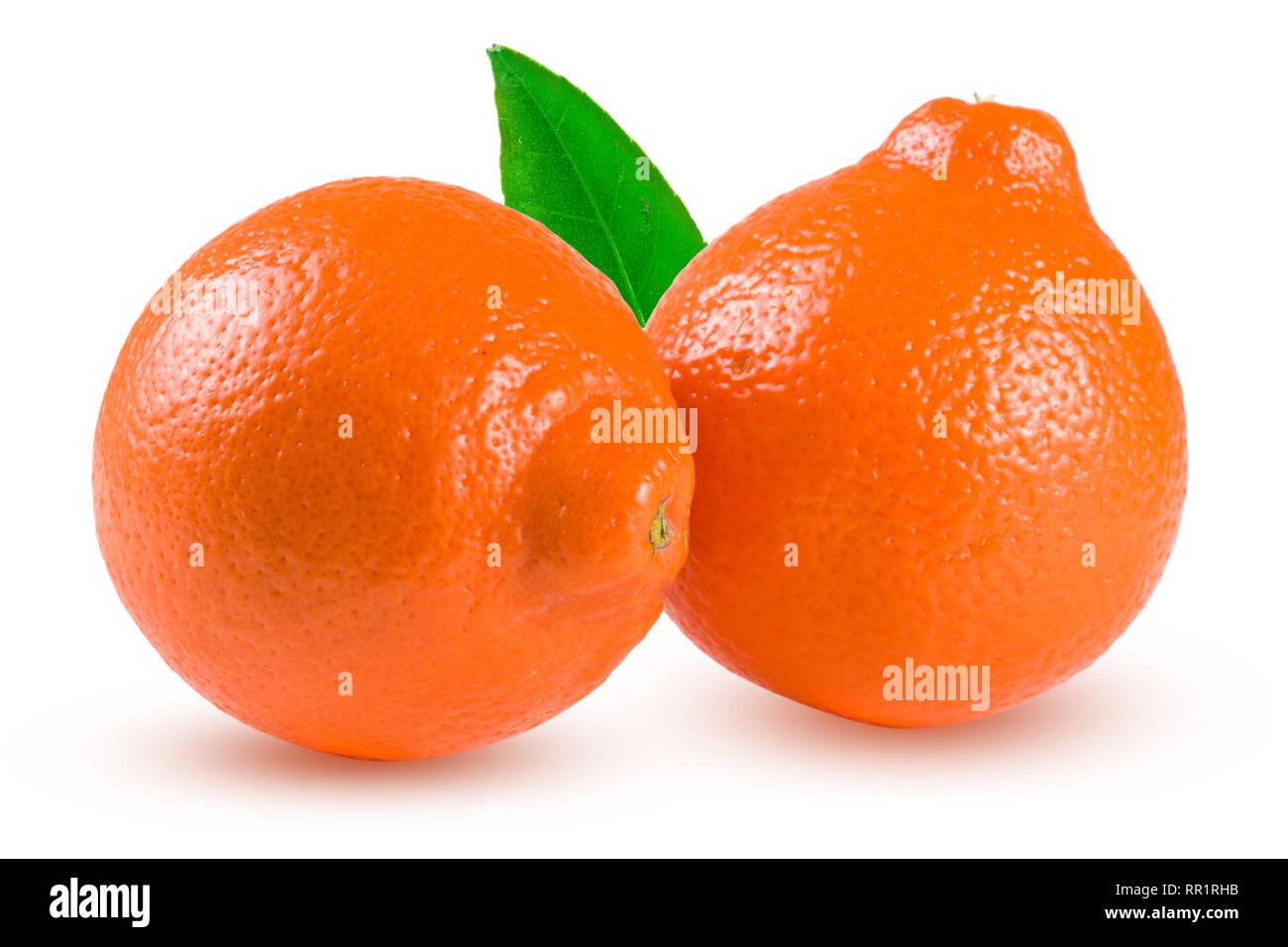 two orange tangerine or Mineola with leaf isolated on white background - Stock Image