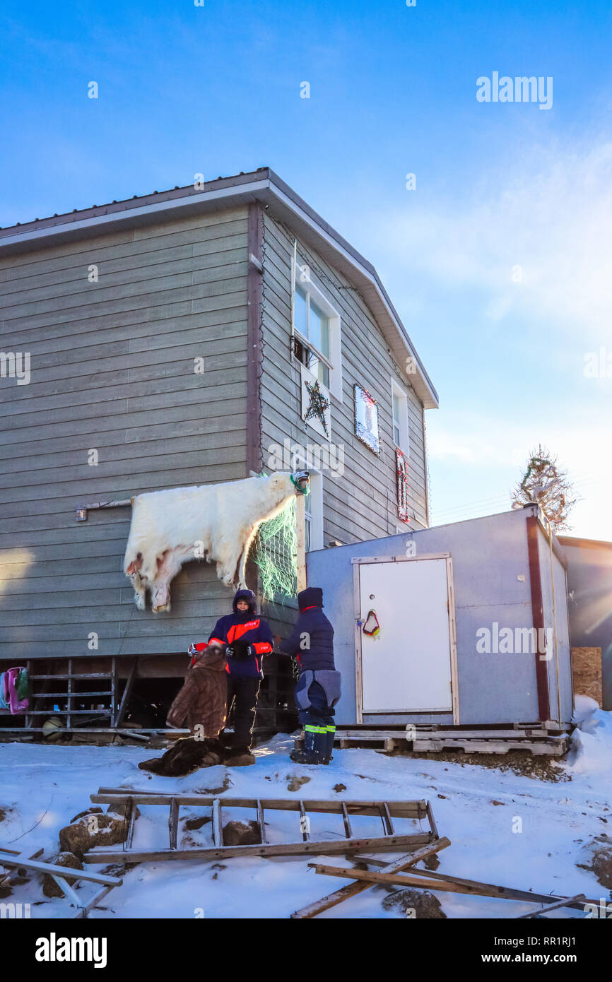 A home in the Inuit community, Pangnirtung. Polar bear skin hangs outside to begin the tanning process and will be turned into warm clothes soon. - Stock Image