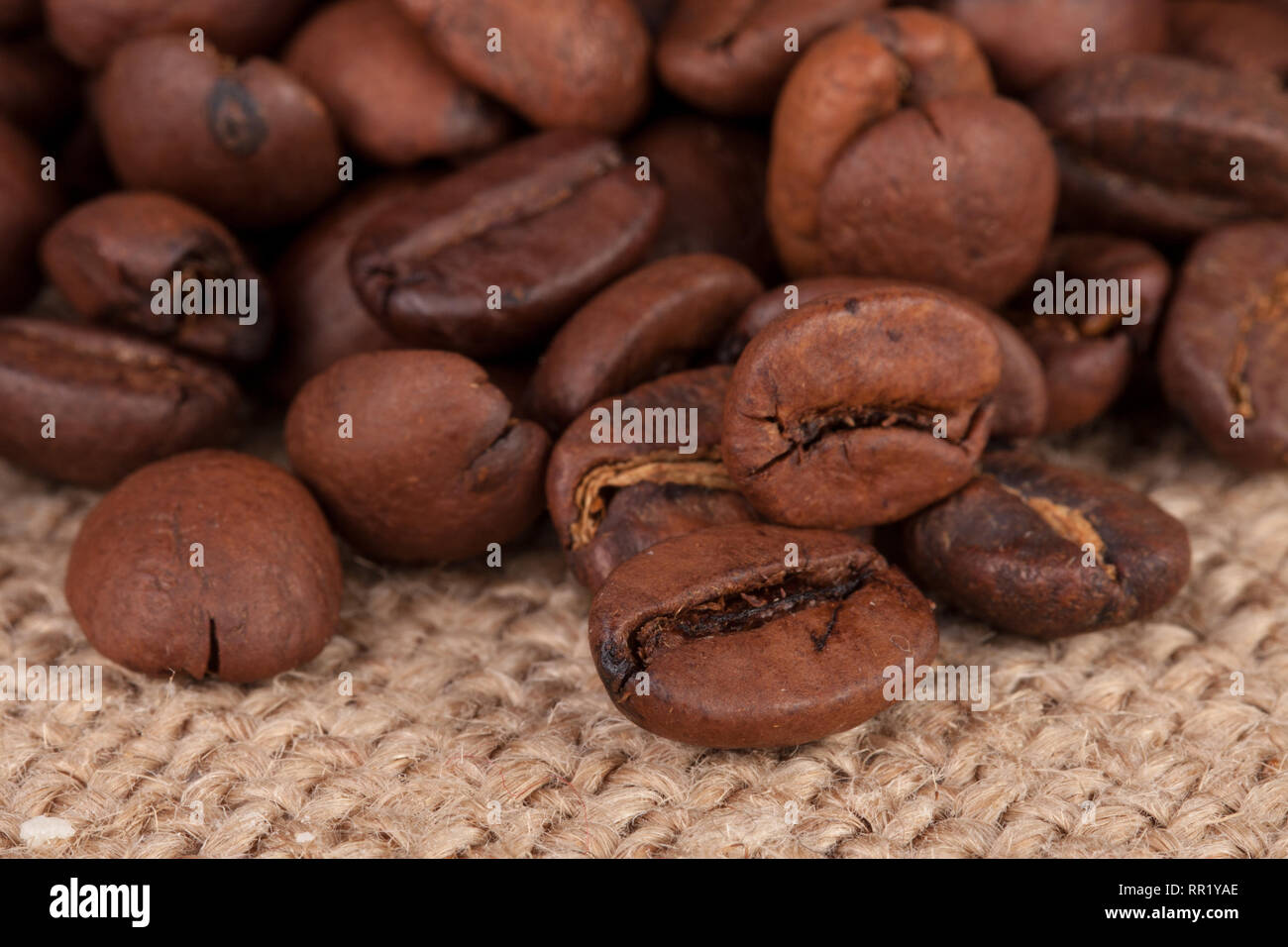 coffee beans on sackcloth close-up macro - Stock Image