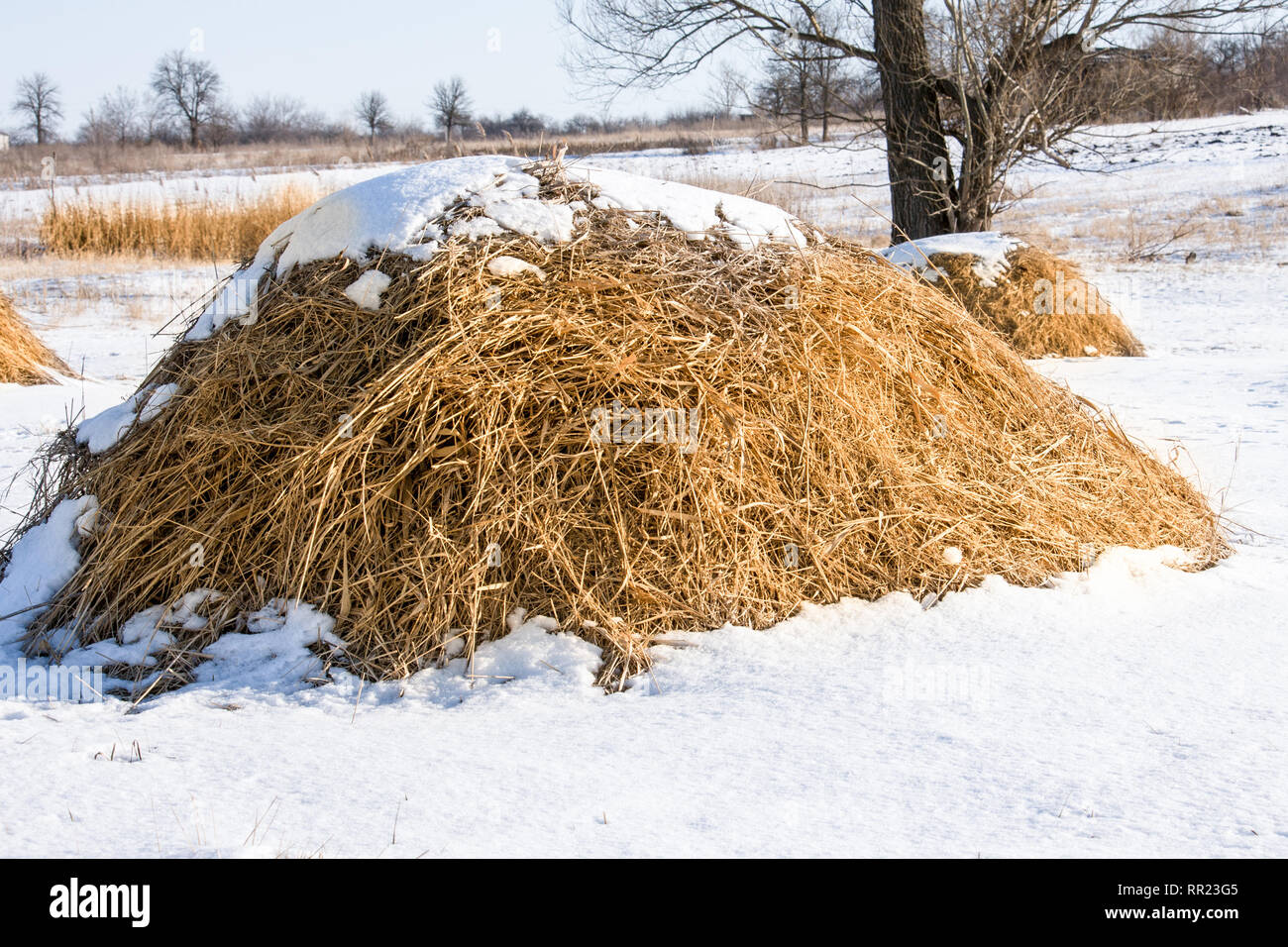 Haystacks in the snow at winter in the village - Stock Image