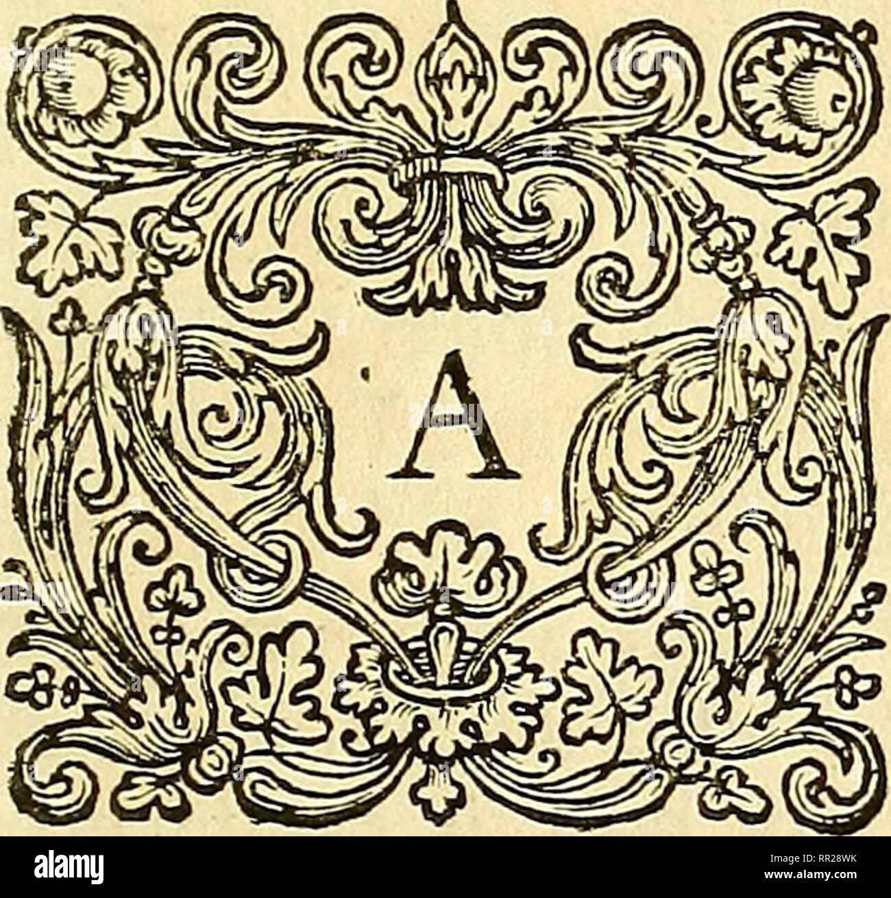 File:Bibliotheca anatomica, medica, chirurgica, etc Fleuron T113958