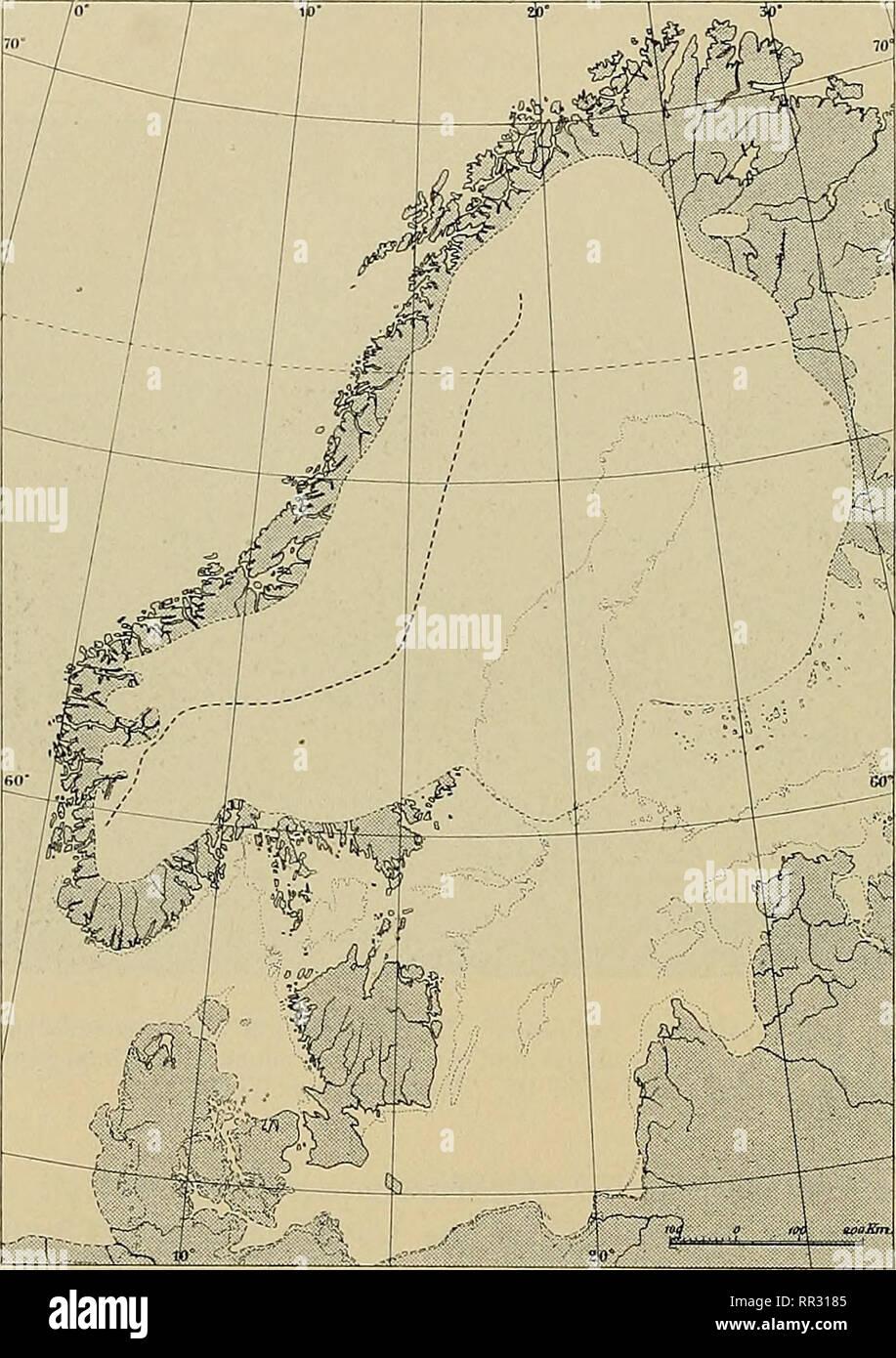 . Actes du IIIme Congrès international de botanique, pub. au nom de la commission d'organisation du Congrès. Botany. 62 dann kônnen die PHanzengeographen ihre Wissenschaft auf dieser Grundlage weiter- bauen. Bis jetzt ist es noch niclit so weit gekommen. Was ich hier iiber die inneren Wanderungen auf der Halbinsel mitteilen kaiin, ist also nur ein erster Versucli, denn die Karten (Fig. o, 6 und 7) kônnen in ihren Détails mit Recht dis- kutiert werden. Die Saclien sind jedoch so intéressant, data sie nicht ganz iibergangen wer- den kônnen. Die, meiner Meinung nadi, bis jetzt l)este Karte liber  - Stock Image
