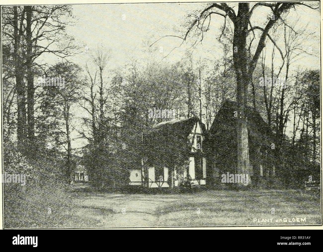 . Actes du IIIme Congres international de botanique : Bruxelles 1910. Botany. — 3o2 — labourés, et dans le lointain s'aperçoit le château du « Middelheim ». Le tout fera partie du nouveau parc et, par conséquent, sera aménagé pour obtenir un ensemble harmonieux. Nous côtoyons, en la dominant, la route de Wilryck et apercevons, plus loin, là où le chemin se retrouve au niveau général du parc, dans une des parties les plus boisées, entre les troncs de hêtres très élancés, un chalet rustique, passablement délabré, mais très pittoresquement niché dans un cadre très fouillé, qui, l'été, sera d'un v Stock Photo